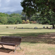 City park resting on the bench — Stock Photo
